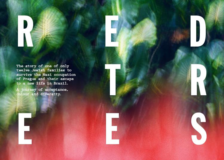 Red Trees Kickstarter 07
